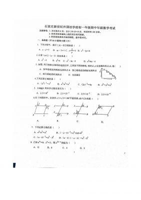 第二学期河北省石家庄新世纪外国语学校初一年级期中数学考试