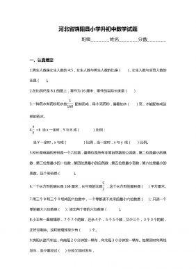 河北省饶阳县小学升初中数学试题