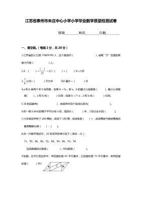 江苏省泰州市朱庄中心小学小学毕业数学质量检测试卷
